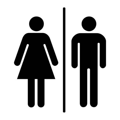 feminizem fdv roman vodeb - Enotna stranišča, FDV in feminizem + VIDEO